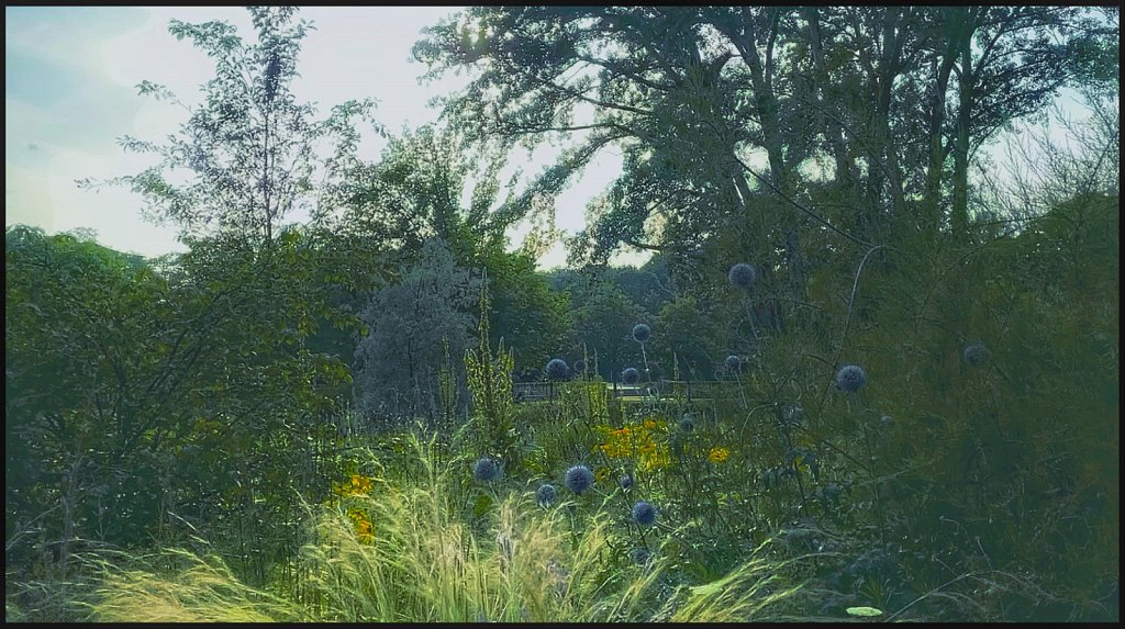 Blick über den Steppengarten